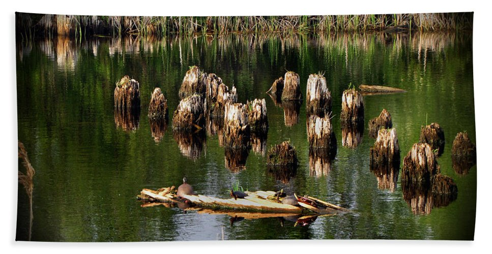 Landscape Beach Towel featuring the photograph Old Pier Pylons by Ms Judi
