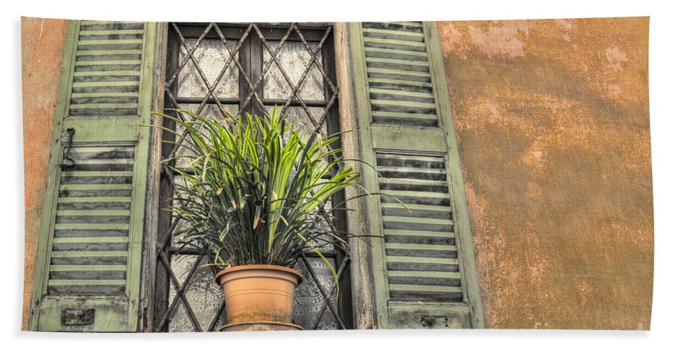 Window Beach Towel featuring the photograph Old Window And A Green Plant by Mats Silvan