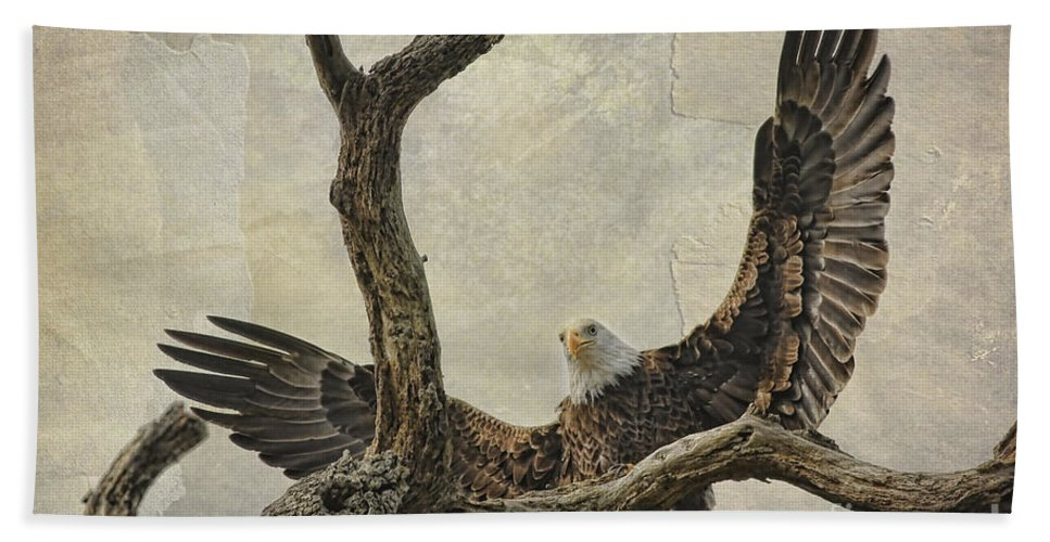 Raptor Beach Towel featuring the photograph On Wings High by Deborah Benoit