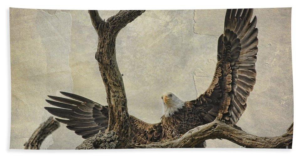 Raptor Beach Sheet featuring the photograph On Wings High by Deborah Benoit