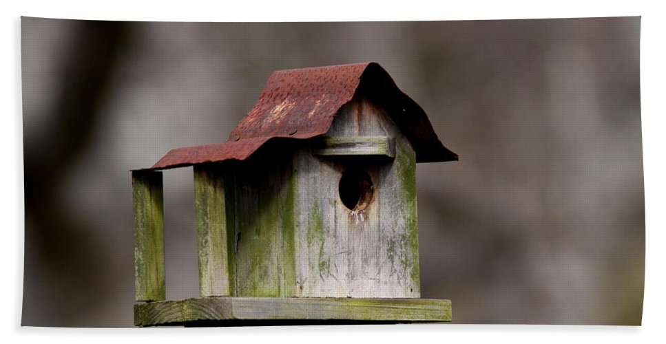 Nature Beach Towel featuring the photograph One Room Shack - Bird House by Travis Truelove