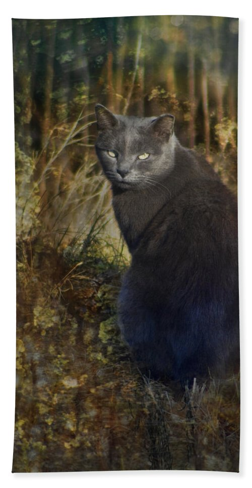 Feral Beach Towel featuring the photograph Only The Lonely by Kathy Clark