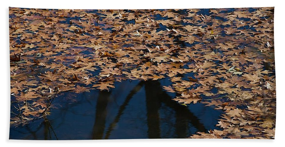 Creek Beach Towel featuring the photograph Open Water by Joseph Yarbrough