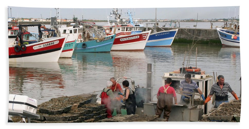 Oyster Harvest Beach Towel featuring the photograph Oyster Harvest by Wes and Dotty Weber