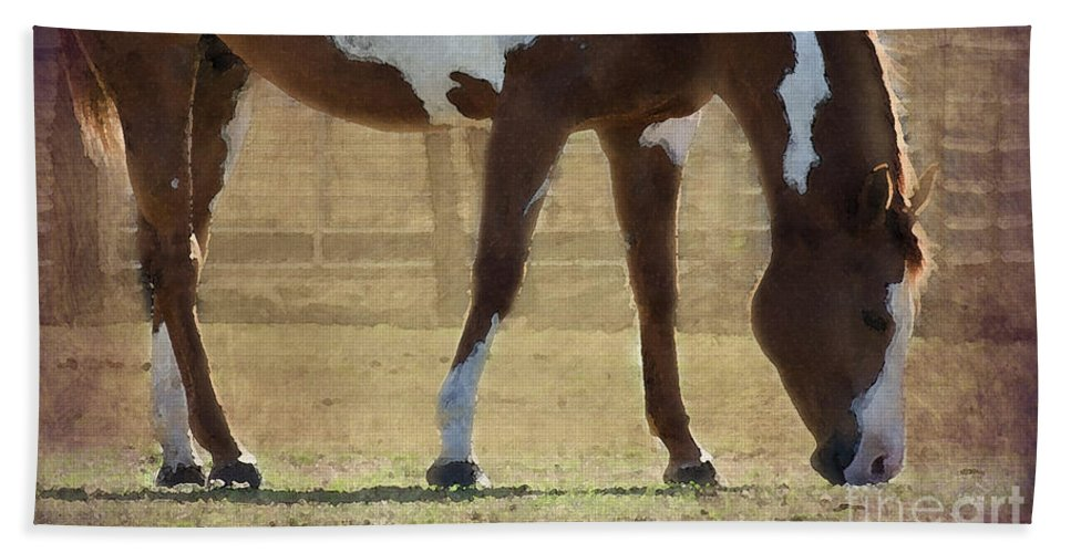 Horse Beach Towel featuring the photograph Paint Horse by Betty LaRue