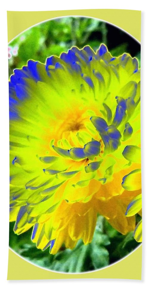 Painted Chrysanthemums Beach Towel featuring the digital art Painted Chrysanthemums by Will Borden