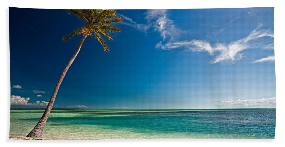 Palm Beach Towel featuring the photograph Palm On Coco Cay by Christopher Holmes