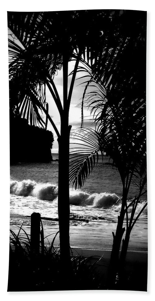 Palm Beach Towel featuring the photograph Palm Tree Silouette by Kimberly Perry