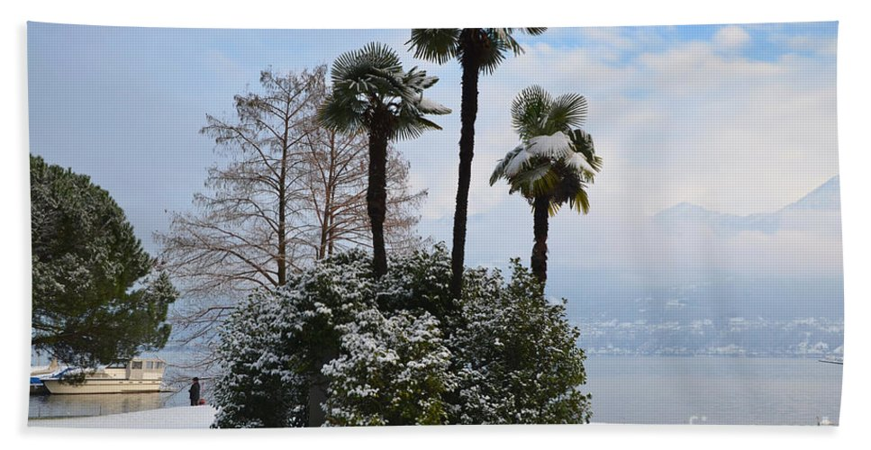 Palm Beach Towel featuring the photograph Palm Trees With Snow by Mats Silvan