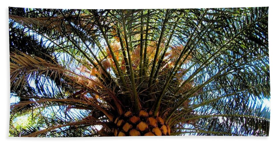Palm Beach Towel featuring the photograph Palms by Art Dingo