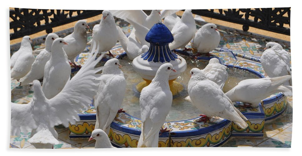 White Pigeons Beach Towel featuring the photograph Pigeons Of Maria Luisa Parque by Mary Machare
