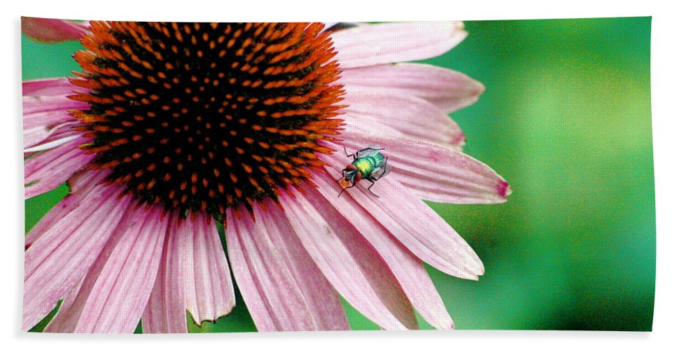 Beach Towel featuring the photograph Pinking Shears by Trish Hale