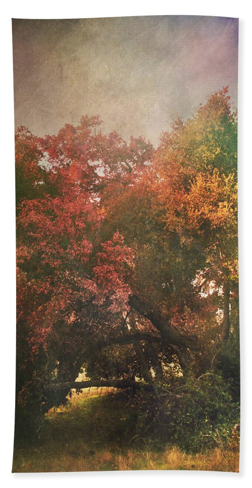 Trees Beach Towel featuring the photograph Please Let There Be Magic On The Other Side by Laurie Search