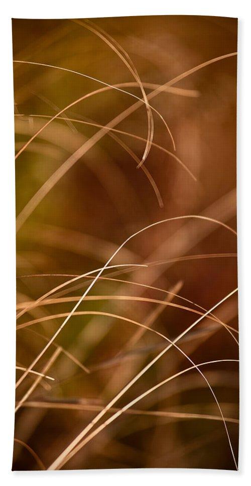 Prairie Beach Towel featuring the photograph Prairie Grasses Number 4 by Steve Gadomski