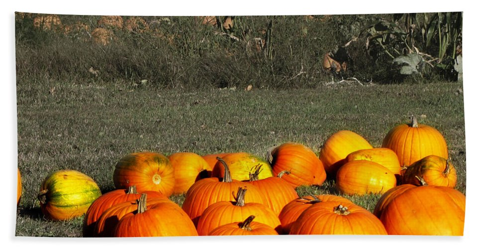 Pumpkin Farm Beach Towel featuring the photograph Pumpkin Farm by Ms Judi