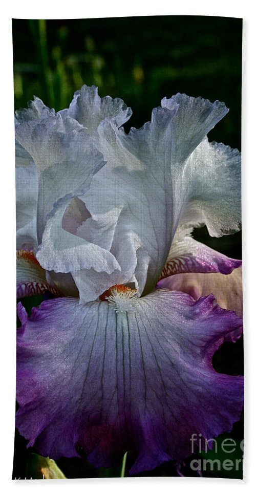 Plant Beach Towel featuring the photograph Purple Hues by Susan Herber