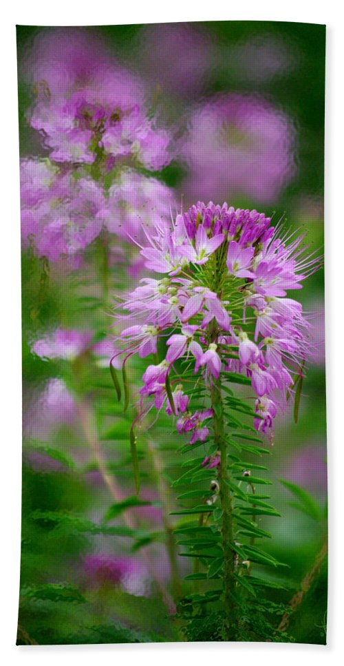 Wildflower Beach Towel featuring the photograph Purple Serenade by Vicki Pelham