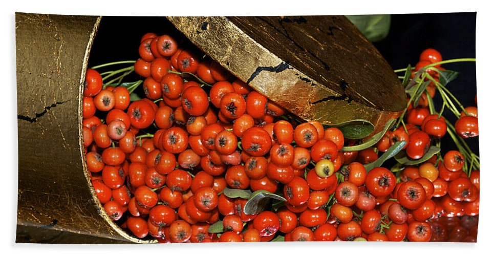 Berries Beach Towel featuring the photograph Pyracantha Berries by Phyllis Denton