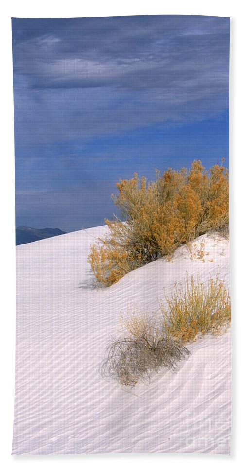Sandra Bronstein Beach Towel featuring the photograph Windswept - White Sands National Monument by Sandra Bronstein
