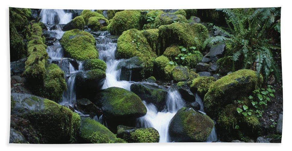 Rainforest Beach Towel featuring the photograph Rain Forest Stream by Sandra Bronstein