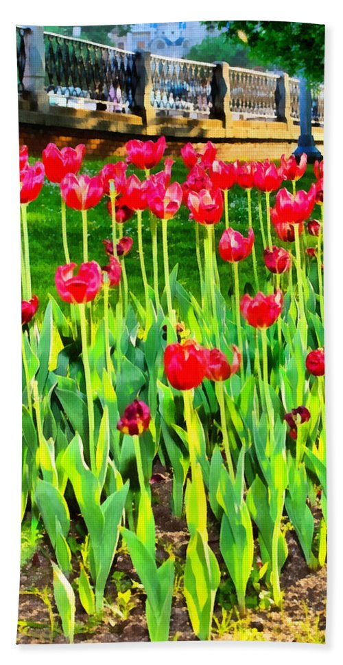 Art Beach Towel featuring the photograph Red Tulips by Michael Goyberg