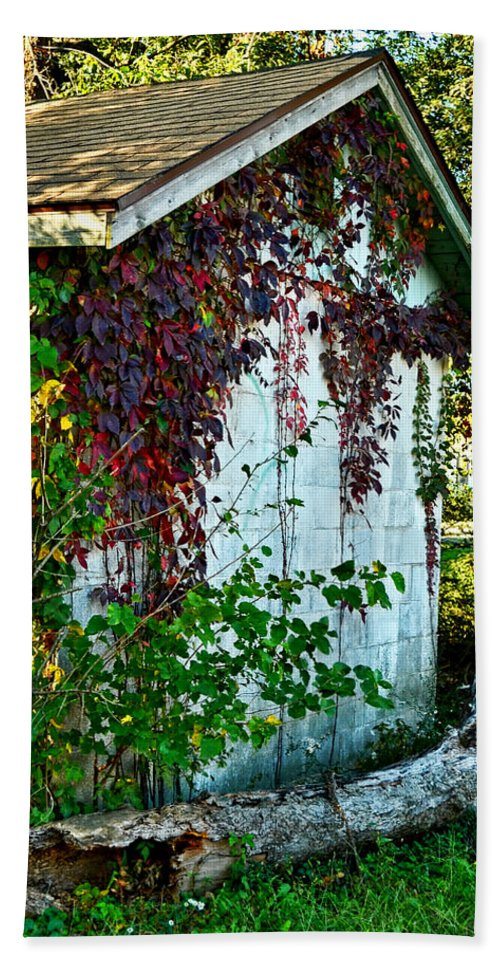Arcitecture Beach Towel featuring the photograph Red Vine Shed by Debbie Portwood