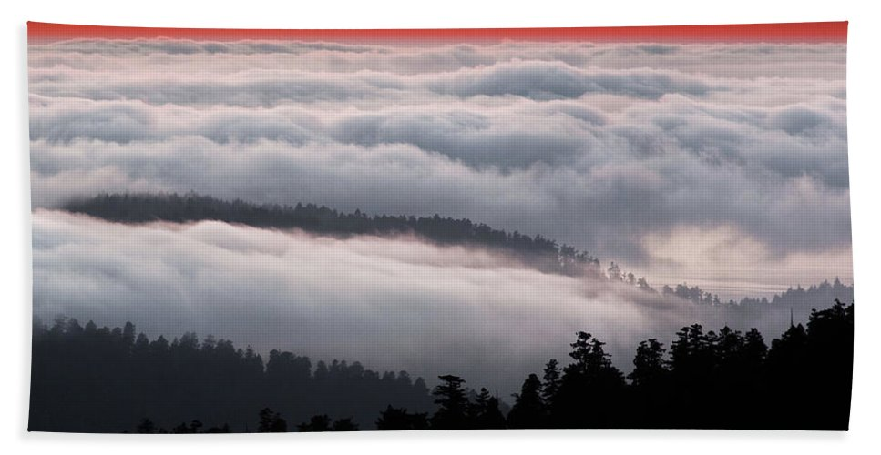 Clouds Beach Towel featuring the photograph Redwood Clouds by Greg Nyquist