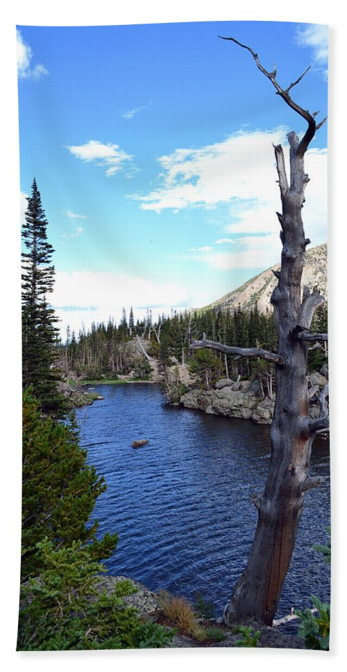 Rocky Mountains Beach Towel featuring the photograph Rocky Mountain National Park1 by Zawhaus Photography