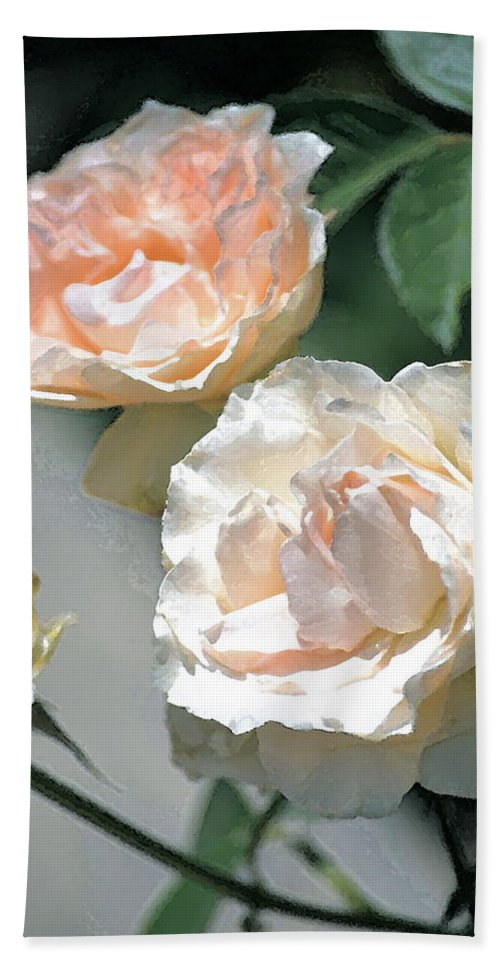 Floral Beach Towel featuring the photograph Rose 125 by Pamela Cooper