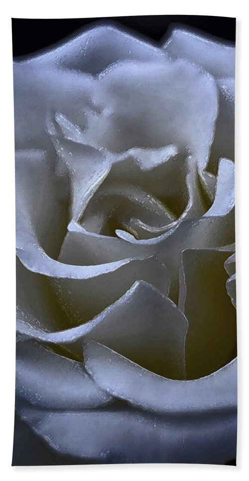 Floral Beach Towel featuring the photograph Rose 156 by Pamela Cooper