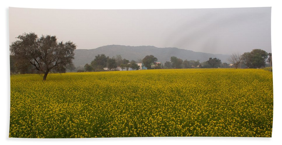 Farm Beach Towel featuring the photograph Rural Landscape With A Field Of Mustard by Ashish Agarwal