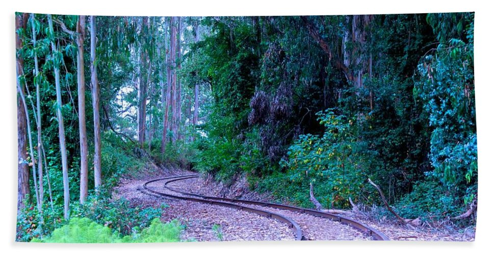 Railroad Tracks Beach Towel featuring the photograph S Curve In The Forest by Eric Tressler