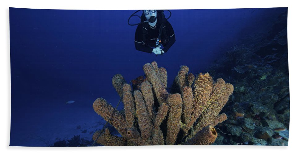 Bonaire Beach Towel featuring the photograph Scuba Diver Swims Underwater Amongst by Terry Moore