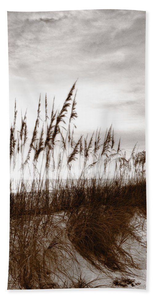 Absence Beach Towel featuring the photograph Sea Oats 1 by Skip Nall