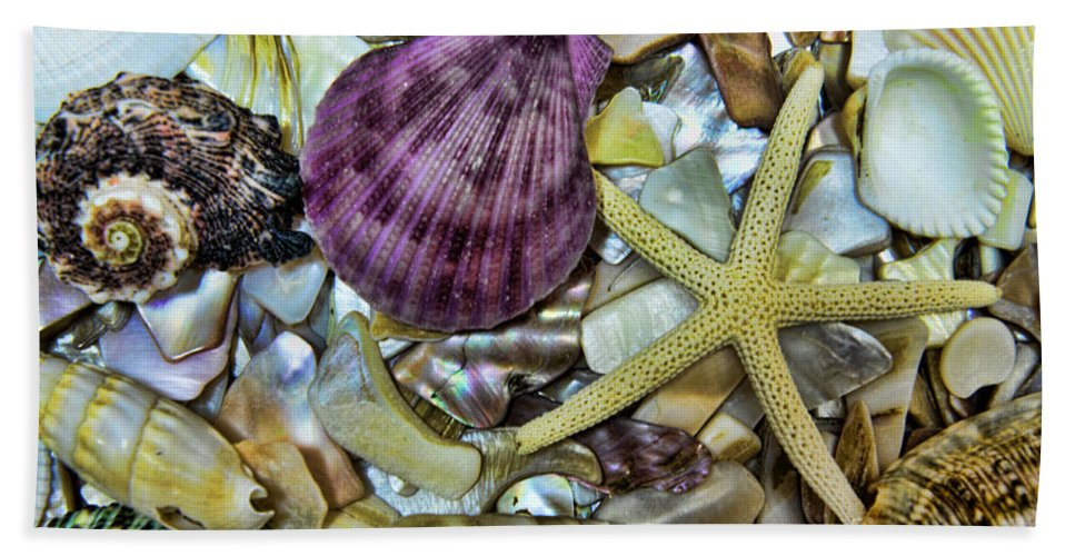Shells Beach Towel featuring the photograph Sea Treasure - Landscape by Paul Ward