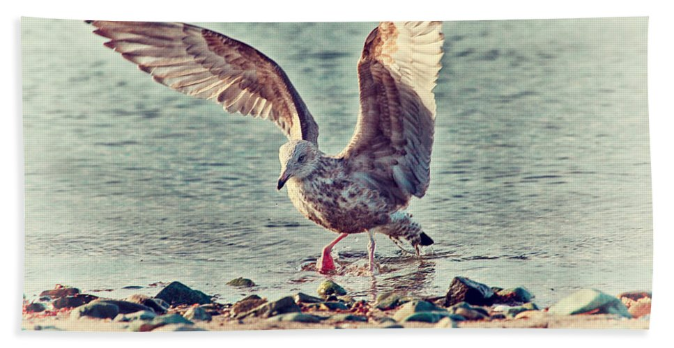 Seagull Beach Towel featuring the photograph Seagull Flaps by Karol Livote