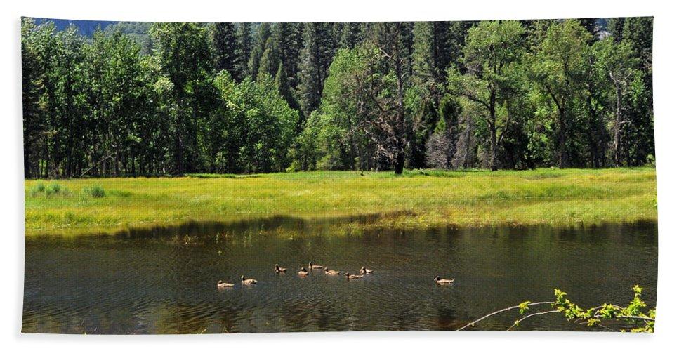 Yosemite Beach Towel featuring the photograph Seasonal Duck Pond by Lynn Bauer