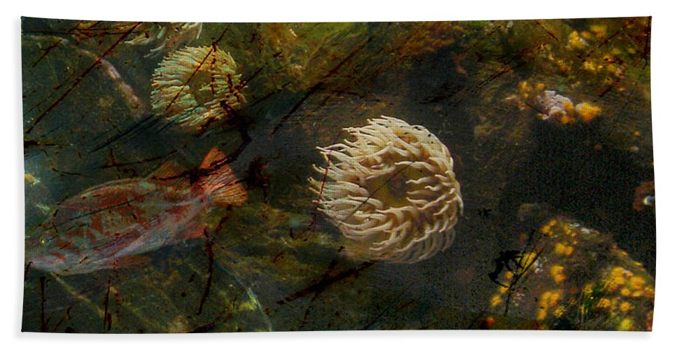 : Jerry Cordeiro Photographs Photographs Photographs Photographs Beach Towel featuring the photograph See Of Fossil Three by The Artist Project