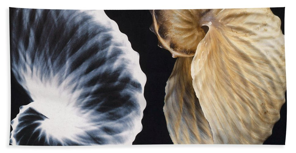 X-ray Beach Towel featuring the photograph Shell X-ray by Photo Researchers