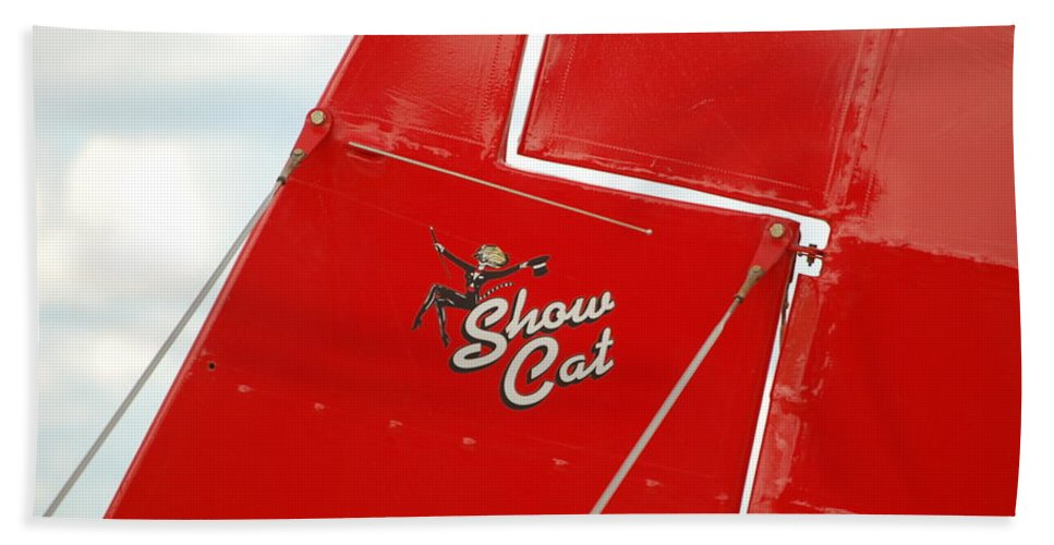 Show Cat Beach Towel featuring the photograph Show Cat by Randy J Heath