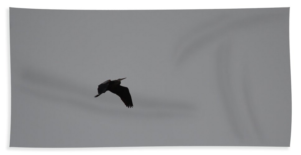 Bird Beach Towel featuring the photograph Silhouette by Donna Brown