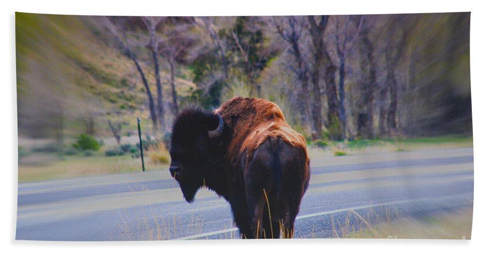 Buffalo Beach Towel featuring the photograph Single Buffalo In Yellowstone Np by Susanne Van Hulst