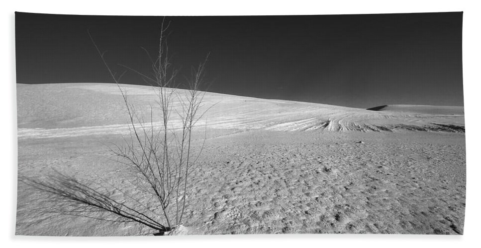 New Mexico Beach Towel featuring the photograph Single Bush 1 by Sean Wray