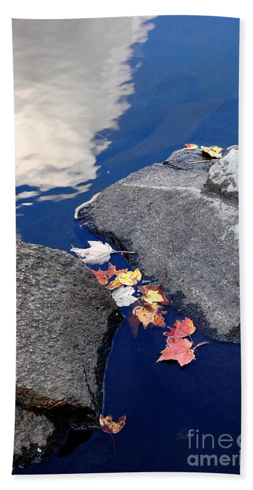 Sky Beach Towel featuring the photograph Sky Reflection Leaves And Rocks by Mike Nellums