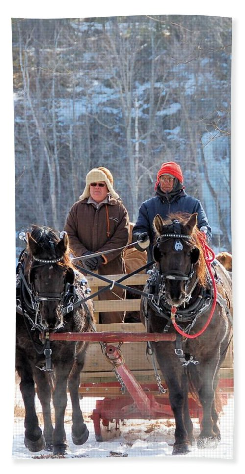 Horse Beach Towel featuring the photograph Sleigh Ride In The Frontenac Axis by Valerie Kirkwood