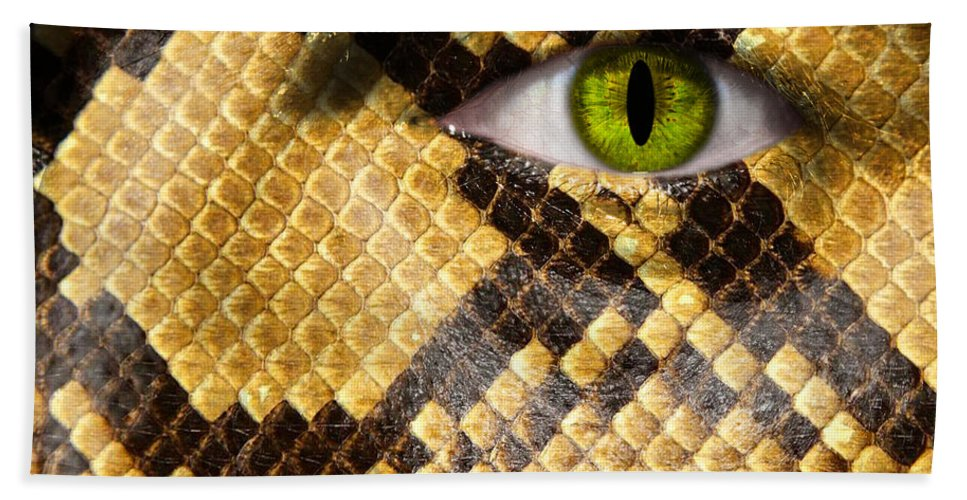 Amphibia Beach Towel featuring the photograph Snake Eye by Semmick Photo