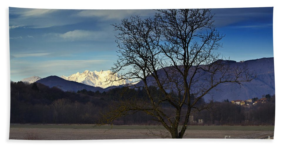 Trees Beach Towel featuring the photograph Snow-capped Monte Rosa by Mats Silvan