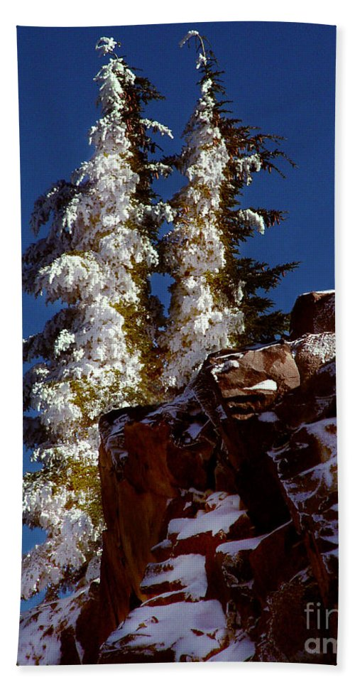 Snow Tipped Trees Beach Towel featuring the photograph Snow Tipped Trees by Peter Piatt