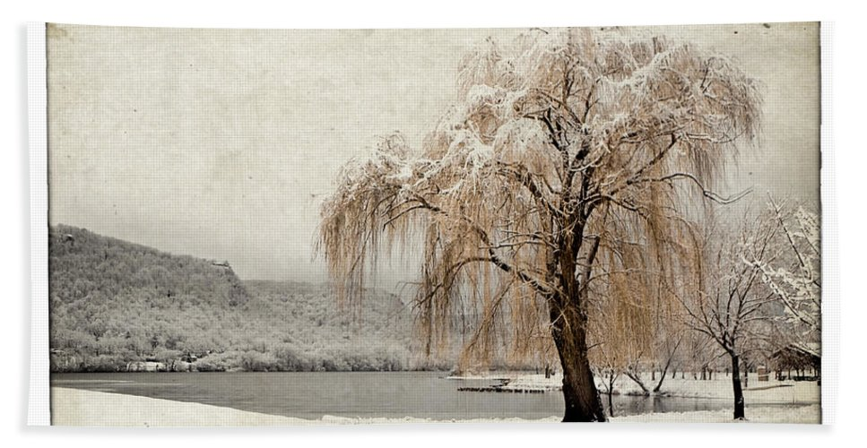 Tree Beach Towel featuring the photograph Snow Tree 1 by Al Mueller