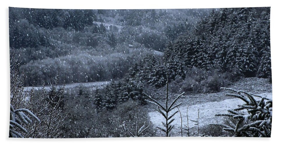 Snow Beach Towel featuring the photograph Snowfall by Katie Wing Vigil